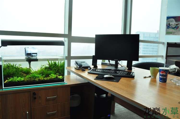 办公室5.jpg