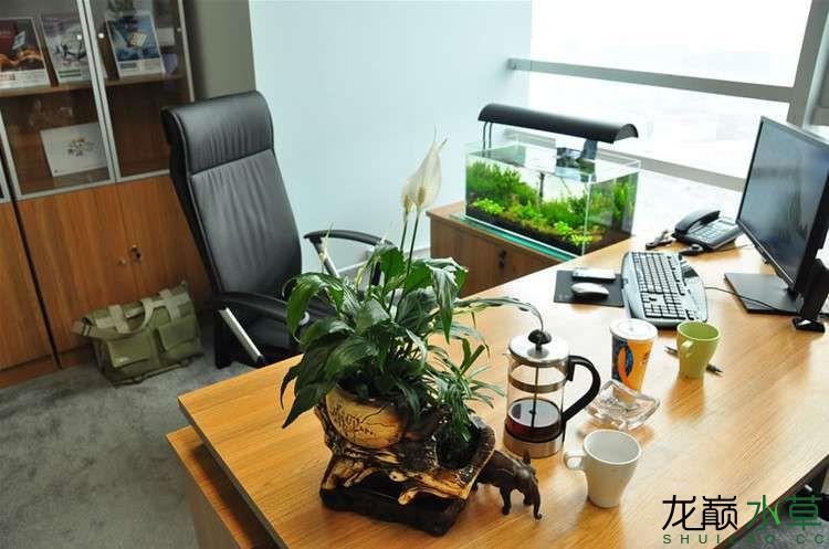 办公室6.jpg
