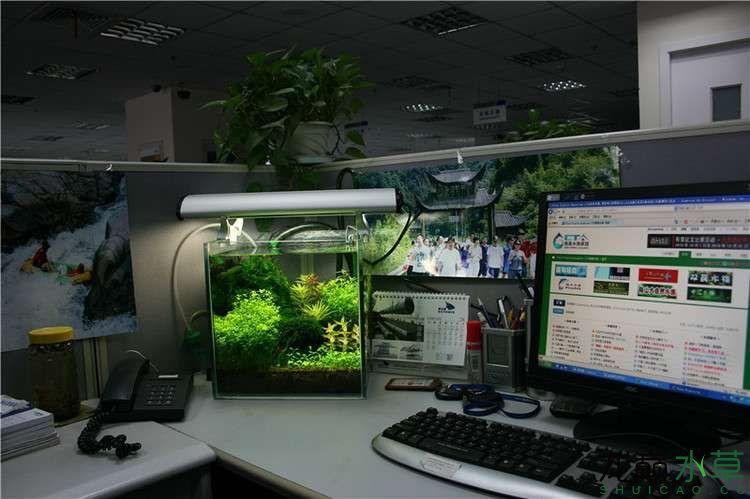 办公室9.jpg