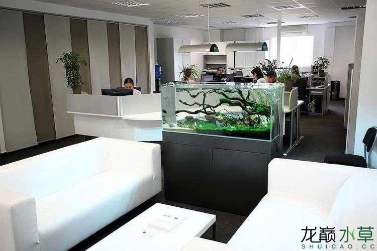 办公室11.jpg