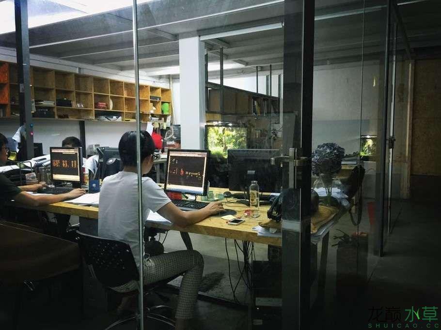 办公室8.jpg