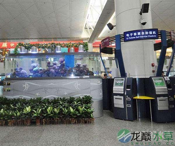 机场7.jpg