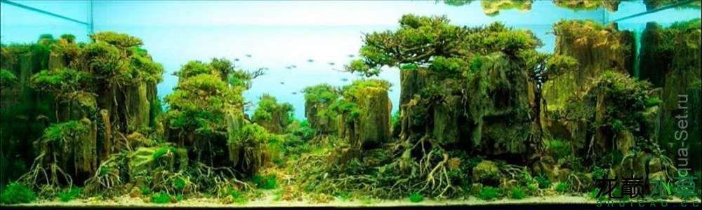 石林06.jpg