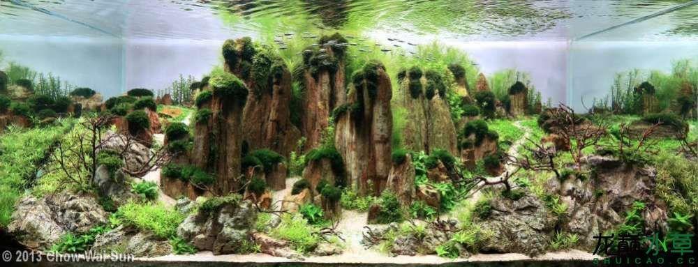 石林10.jpg