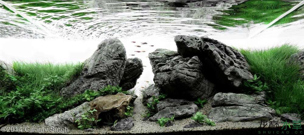 龟纹石13.jpg