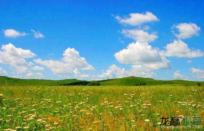 蒙古草原.jpg