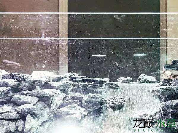 田中26.jpg
