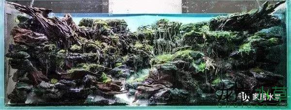 田中38.png