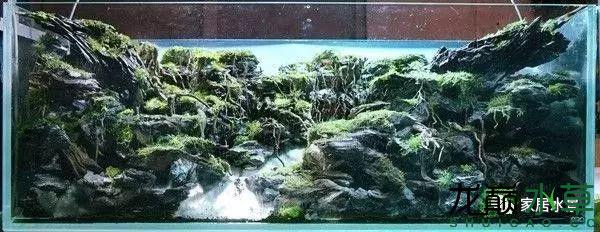 田中40.png