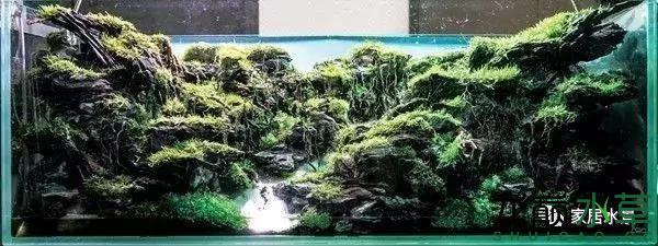 田中43.png