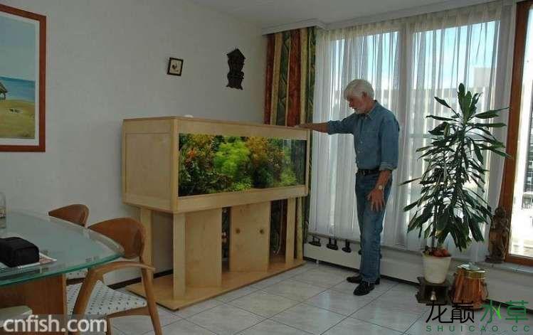 荷兰缸家具4.jpg