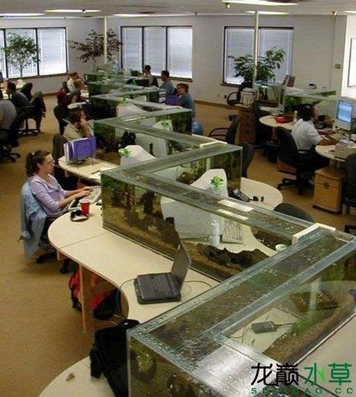 办公桌3.jpg