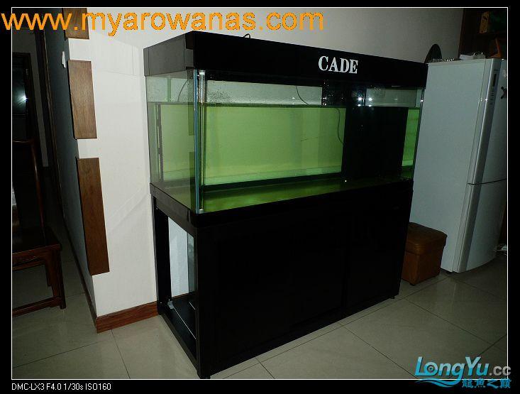 完美龙缸准备-2009-10-1 (更新附件安装 累了) 重庆龙鱼论坛 重庆水族批发市场第1张