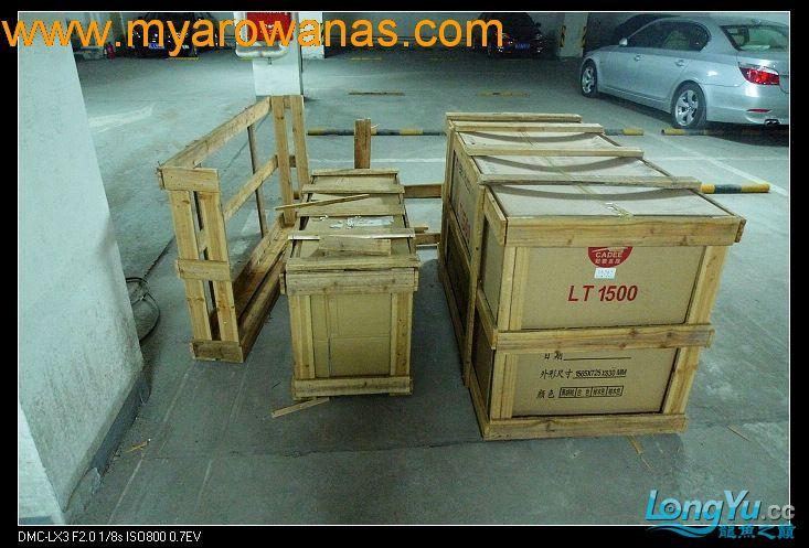 完美龙缸准备-2009-10-1 (更新附件安装 累了) 重庆龙鱼论坛 重庆水族批发市场第2张