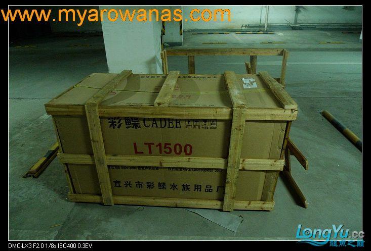 完美龙缸准备-2009-10-1 (更新附件安装 累了) 重庆龙鱼论坛 重庆水族批发市场第3张