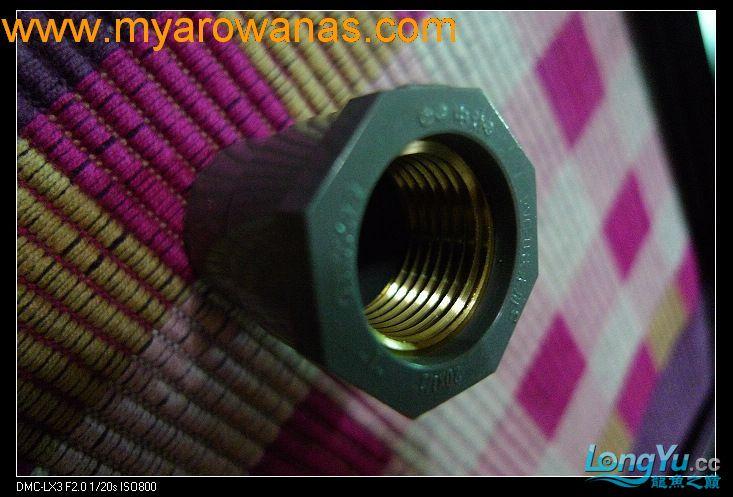 完美龙缸准备-2009-10-1 (更新附件安装 累了) 重庆龙鱼论坛 重庆水族批发市场第11张