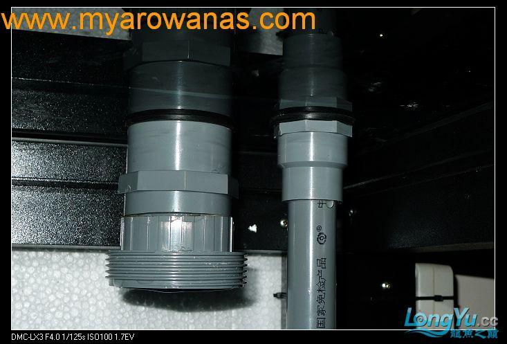 完美龙缸准备-2009-10-1 (更新附件安装 累了) 重庆龙鱼论坛 重庆水族批发市场第12张