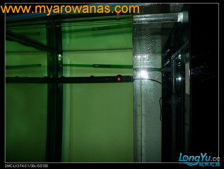 完美龙缸准备-2009-10-1 (更新附件安装 累了) 重庆龙鱼论坛 重庆水族批发市场第27张
