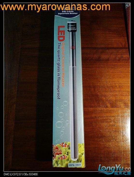 完美龙缸准备-2009-10-1 (更新附件安装 累了) 重庆龙鱼论坛 重庆水族批发市场第25张