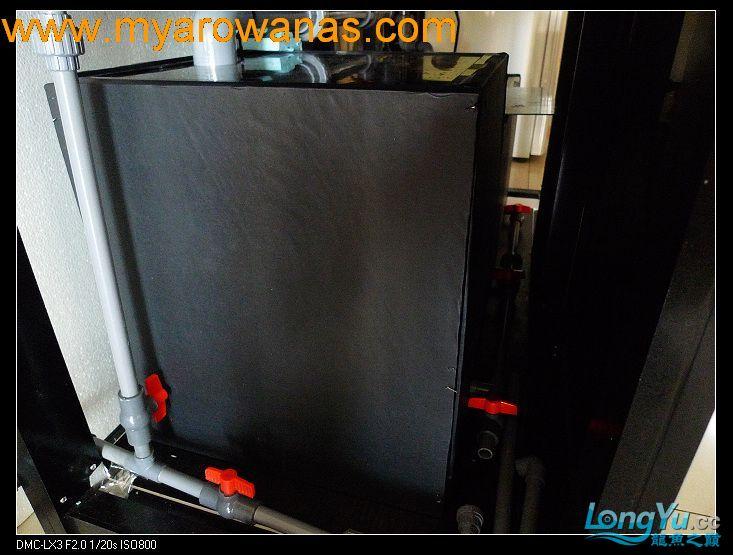 完美龙缸准备-2009-10-1 (更新附件安装 累了) 重庆龙鱼论坛 重庆水族批发市场第41张