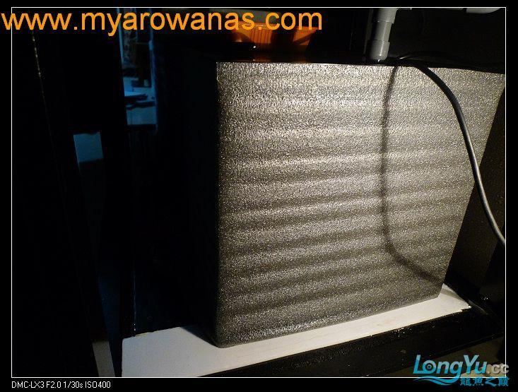 完美龙缸准备-2009-10-1 (更新附件安装 累了) 重庆龙鱼论坛 重庆水族批发市场第39张