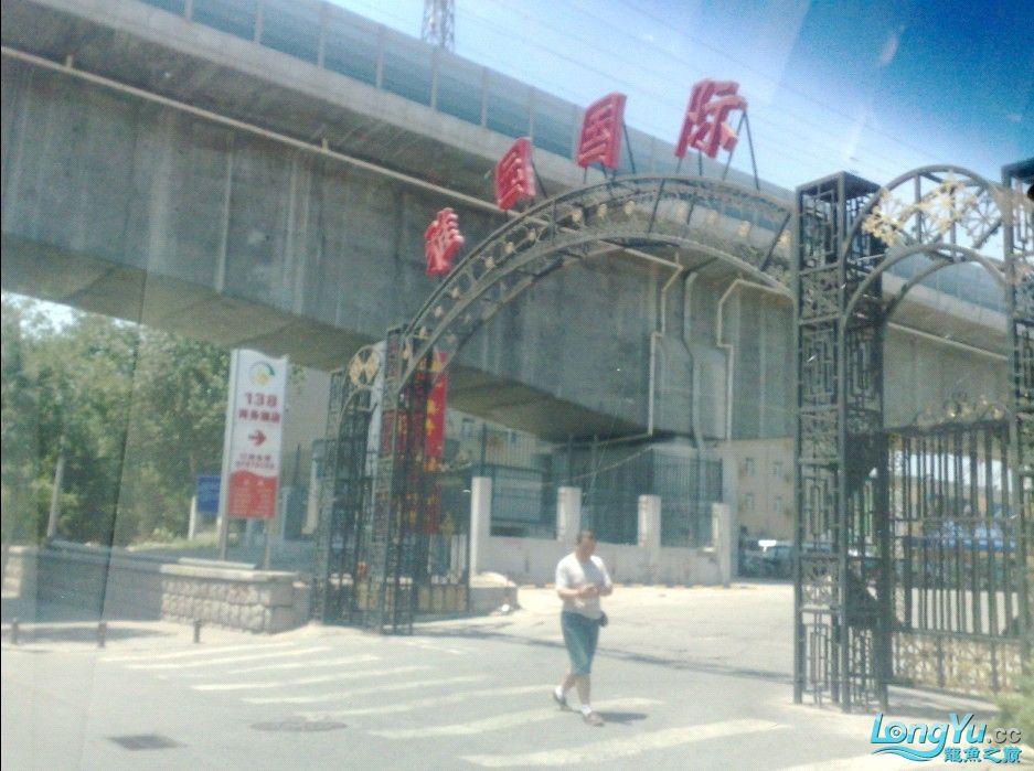 北京雅园国际---------游记