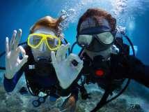 【摄影美图】水下的美照