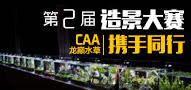 龙巅水草第二届造景大赛,与CAA携手同行!