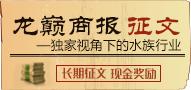 """""""龙巅商报""""征文 一一独家视角下的水族行业"""