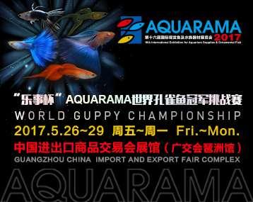 """【比赛】""""乐事杯""""AQUARAMA世界孔雀鱼冠军挑战赛报名系统..."""
