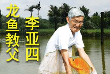 新加坡金龙鱼繁殖场(李亚四渔场)