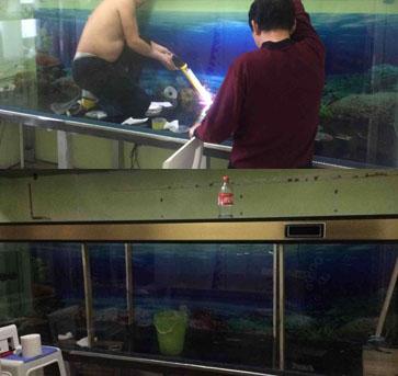 自动换水的3米鱼缸终于完工  有血 有汗