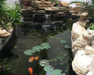 您见过这样的锦鲤鱼池建造过程吗?有图有设计图有真相!