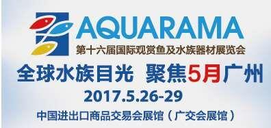 【比赛】中国国际金鱼大赛报名系统火热启动!