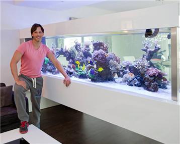 【海水征文】悬浮缸不是悬浮造景!