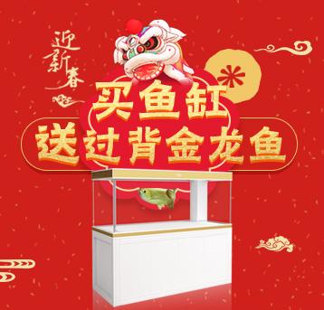 迎新春!活动预告!购爱龙仕鱼缸,送金龙!1.14正式开售!
