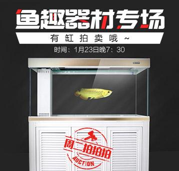 【周二拍拍拍】鱼趣拍卖专场