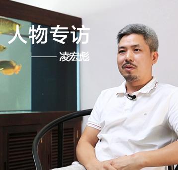 【龙巅鱼邻人物访谈】深圳龙腾四海凌宏彪